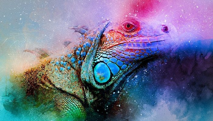 Reptiles – Spirit Animal, Totem, Symbolism and Meaning